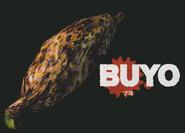 BuyoHOD2GuideArt