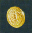 Coin hotd2.PNG