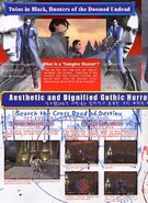 VN arcade flyer5