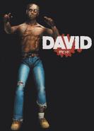 DavidHOD2GuideArt