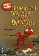 Comment dresser votre dragon 2012 fr