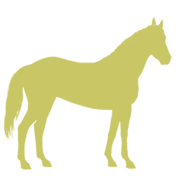 Cheval-ombre.png