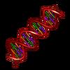 Genetik.png