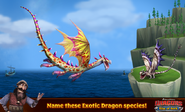 ROB-Exotic Dragons Ad