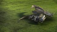 Wingnut (10)