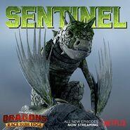 Sentinel promo