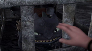 DOB - Dagur tries to touch Toothless gently