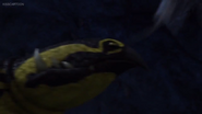 Cavern Crasher 41