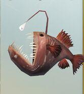 SOD-AnglerFish3