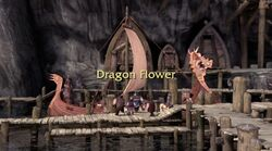 Click here to view more images from Dragon Flower.