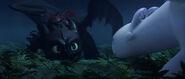 THW-Light Fury, Toothless-26