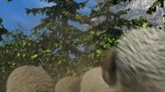 Flock of sheeps 10