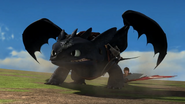 Toothless protects Hiccup