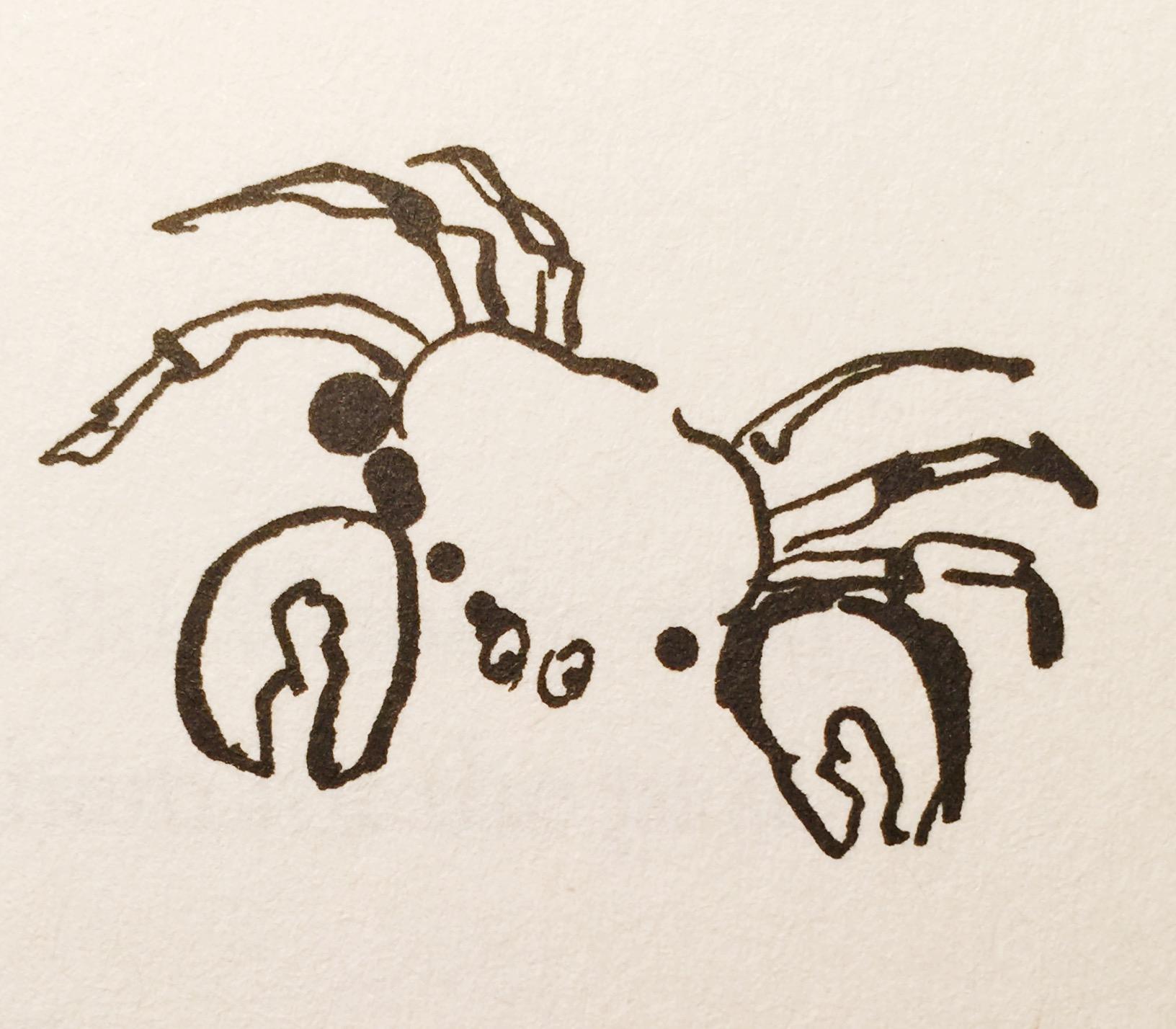 Crab (Books)