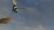 Female Razorwhip 47