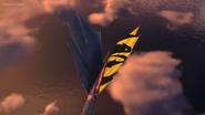 Yellow tail 0