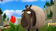 Sheep SD Cinematic 4