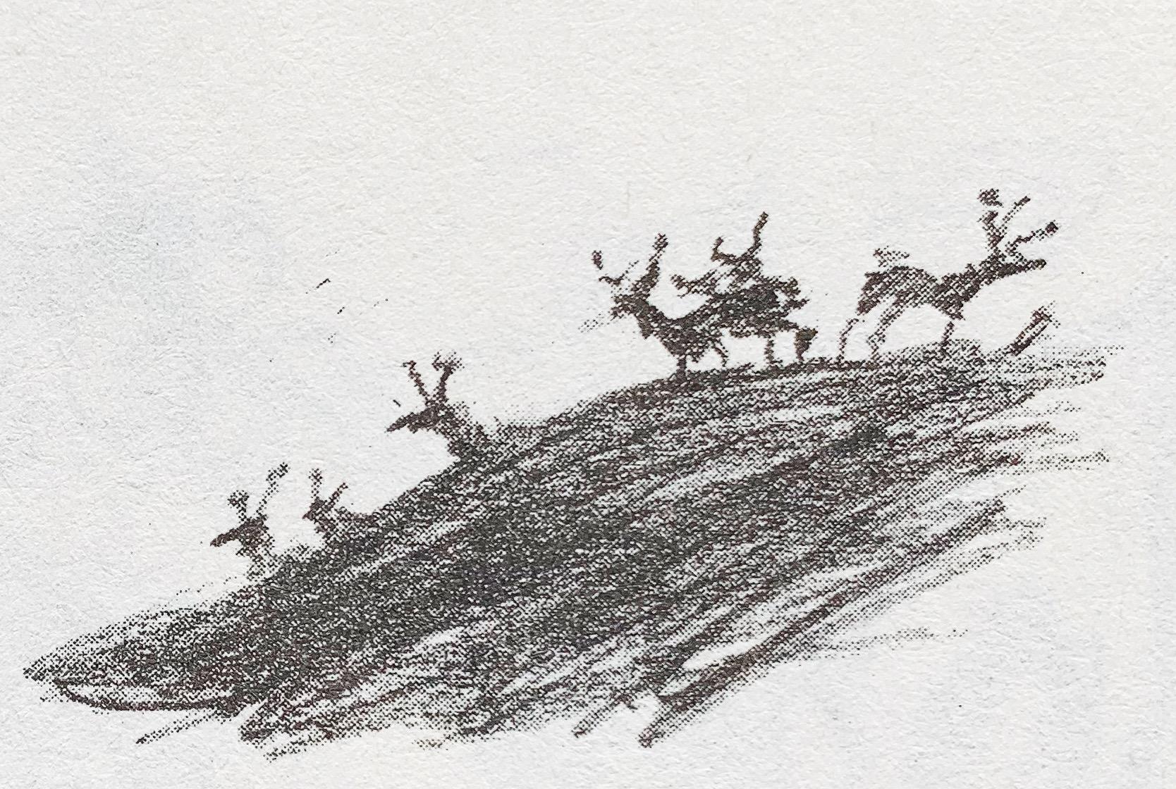 Deer (Books)