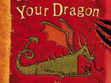 How to Train Your Dragon (Book)