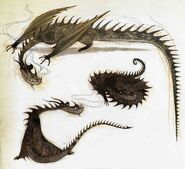 Looking Down Dragon, Curled Dragon and Looking Back Dragon by Nico Marlet