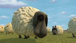 Click here to view more images from Sheep (Franchise).