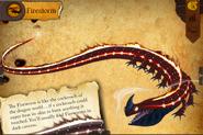 CNDragonSecrets-Fireworm