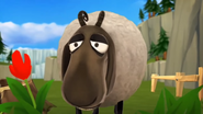 Sheep SD Cinematic 19