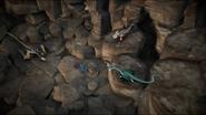 3 dragons hunt