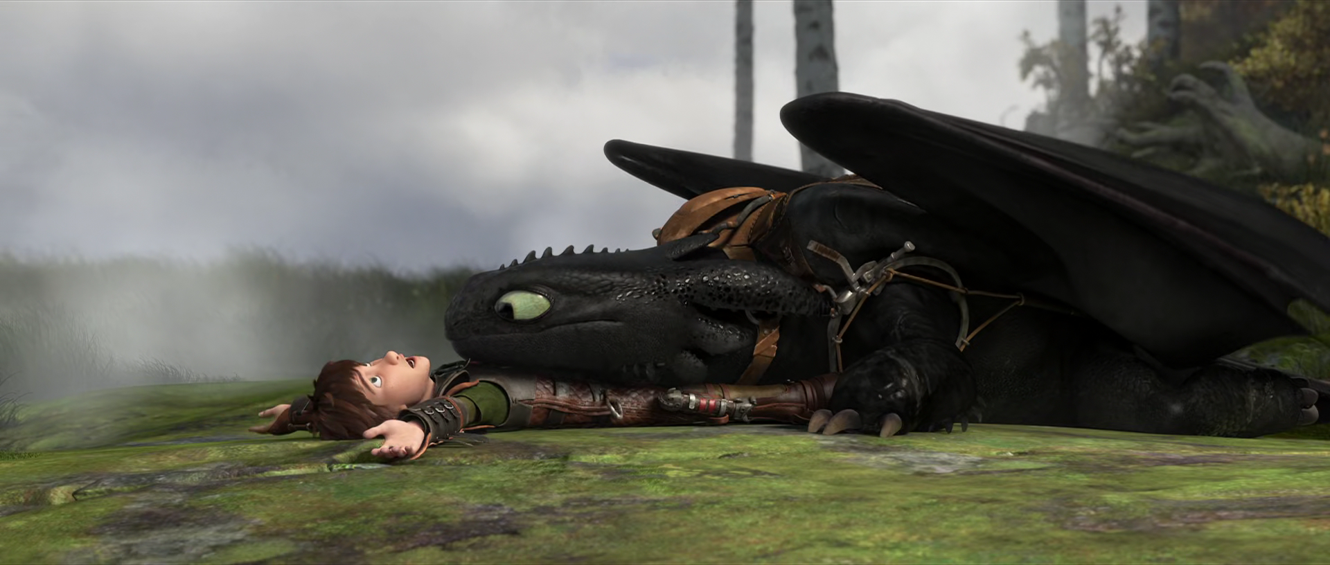 Hiccup and Toothless' Relationship