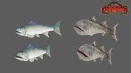 Roshan-poojari-fishes