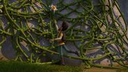SP - Elbone reaching for the flower on the tangle vine