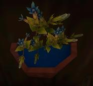 Flower in SoD 5