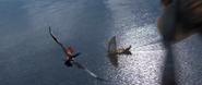 Flying towards Erets Boat