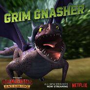 Grim gnasher promo