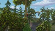 HM - Leyla climbing a tree