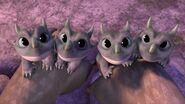 HA - The baby ironclaws looking up at their mom