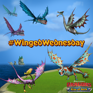 ROB-Winged Wednesday Ad