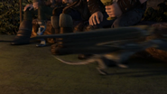 Baby Razorwhip 49