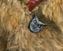 Owl on Eret's vest