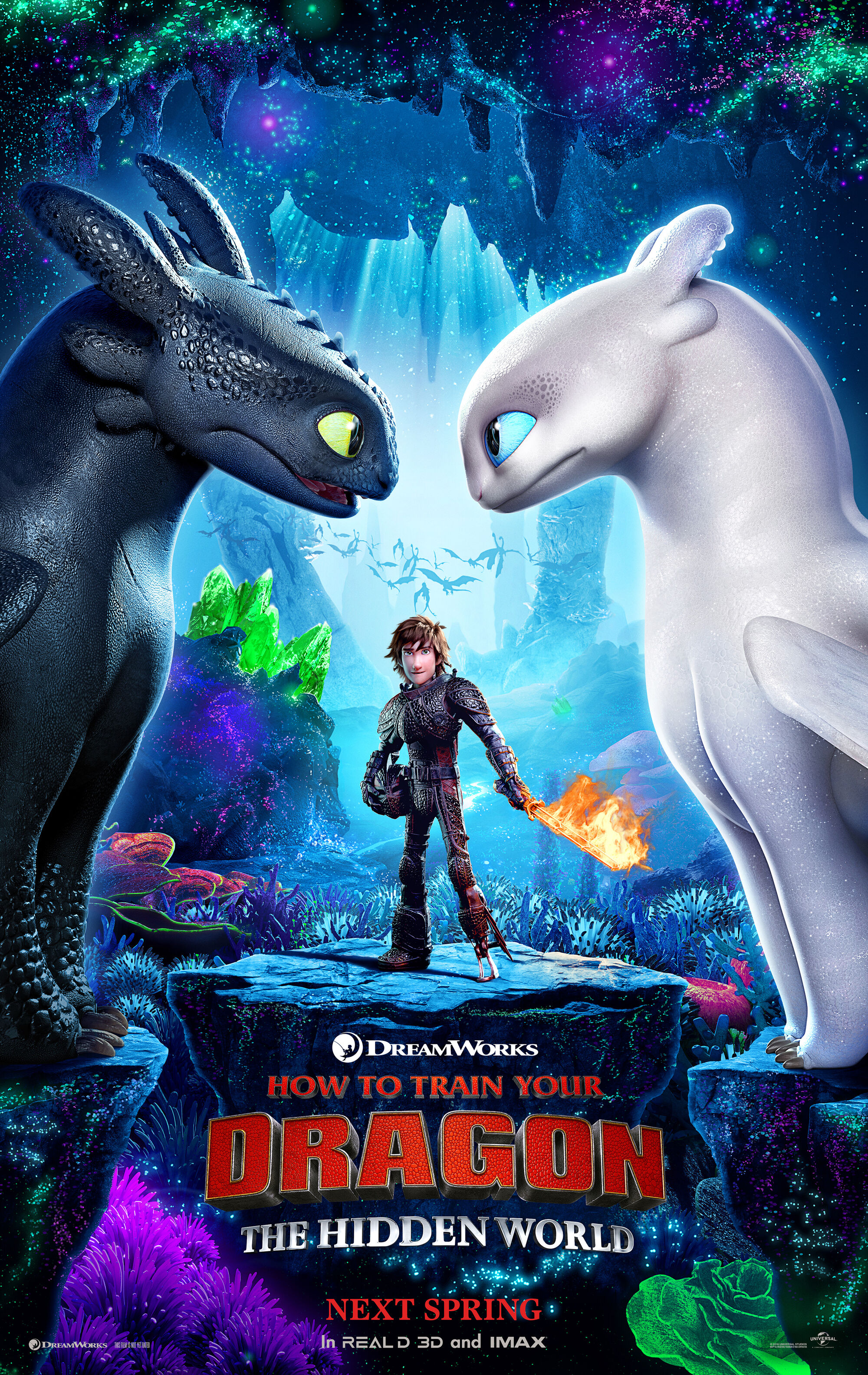 How to Train Your Dragon: The Hidden World  How to Train Your