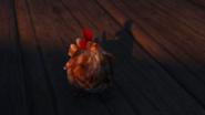 THONTH-Chicken 1