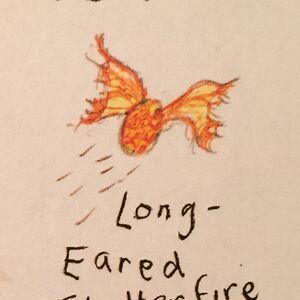 LongEaredFlutterfire2.JPG