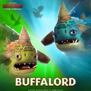 TU-Buffalord Ranking Run Ad