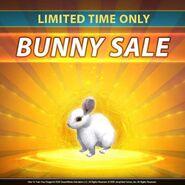 SOD-Bunny Sale