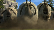 Flock of sheeps 7