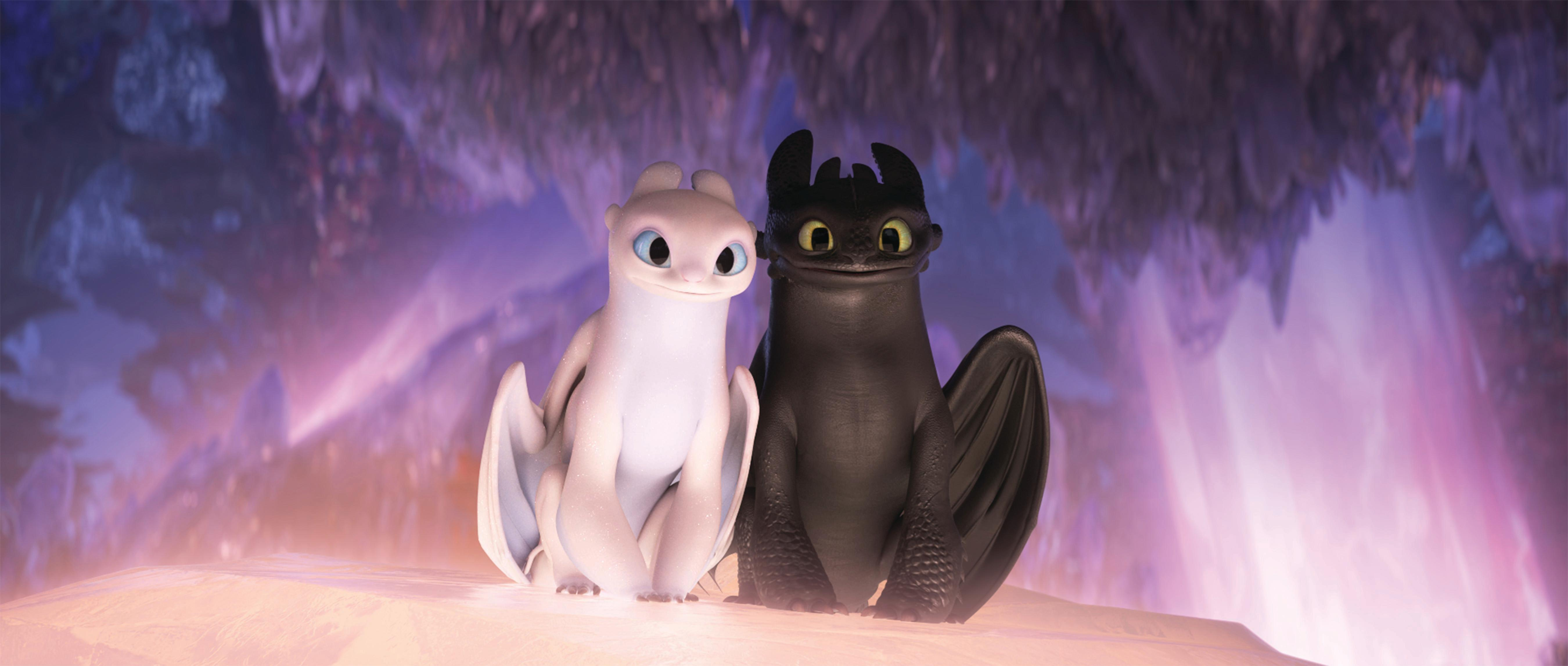 Toothless and Light Fury's Relationship