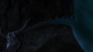 Trap-phoomerang 11