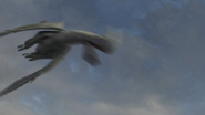 Female Razorwhip 50