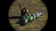 NotLout-DragonRoot1