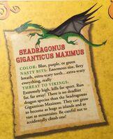 SeadragonusGiganticusMaximus4